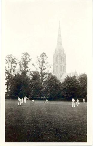 People playing cricket